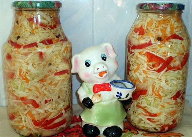 kapustnyj-salat-na-zimu-osennij