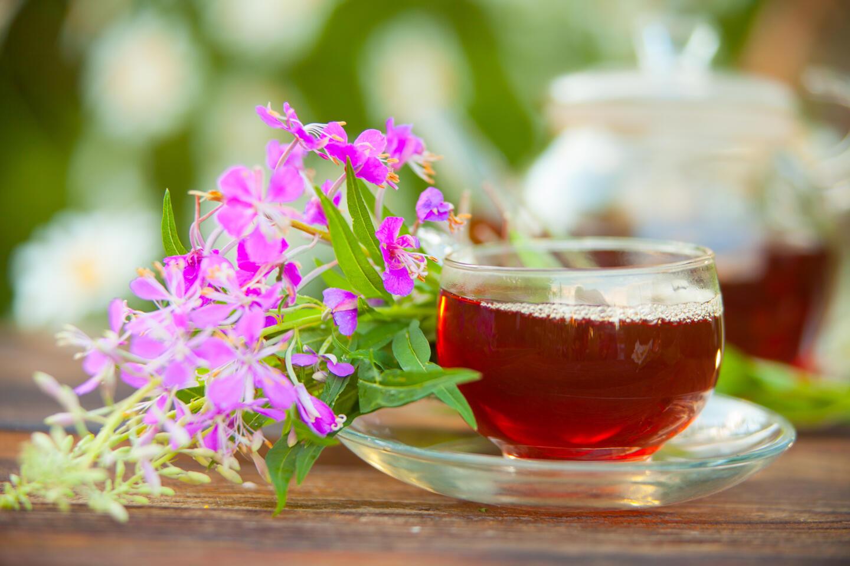 Чем заменить чёрный чай: 4 варианта летних напитков. Изображение номер 1