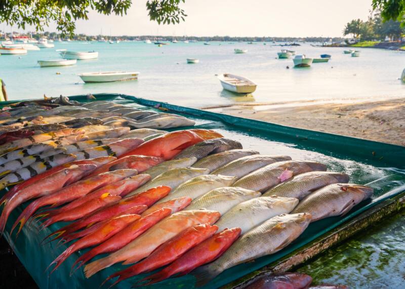 Как правильно выбирать рыбу и что из неё приготовить: советуют эксперты. Изображение номер 3