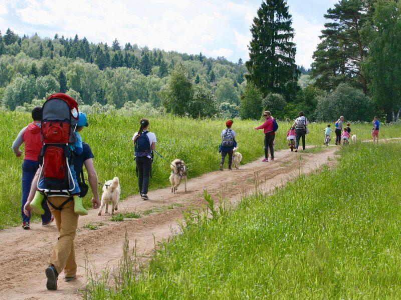 Куда пойти с детьми: 5 маршрутов загородных походов на один-два дня. Изображение номер 7