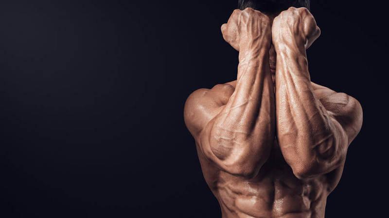 Метрики старости: уходить от болезней надо быстро